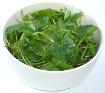 Salata de Untisor